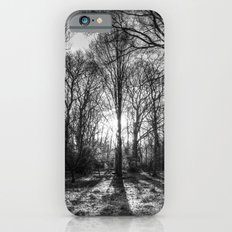 The Monochrome Sun Ray Forest Slim Case iPhone 6s
