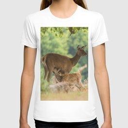 Spring Dear T-shirt