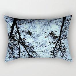 Symmetry Breaking Rectangular Pillow