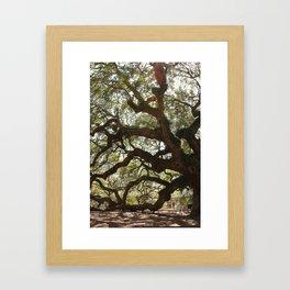 Angel Oak Framed Art Print