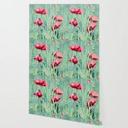 poppy flower Wallpaper