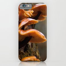 Mushrooms II iPhone 6s Slim Case