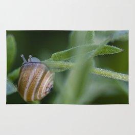 Snail on green #2 Rug