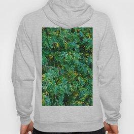 Acacia leaves Hoody