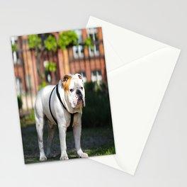 No Entry - Bulldog #decor #homedecor Stationery Cards