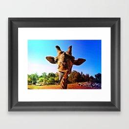 :P Framed Art Print