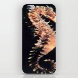 MARINERO iPhone Skin