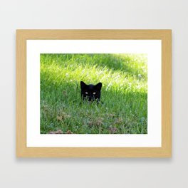 Panther in the Grass Framed Art Print