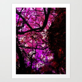 Entwined Branches Art Print