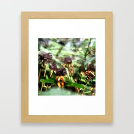 dried flowers Framed Art Print