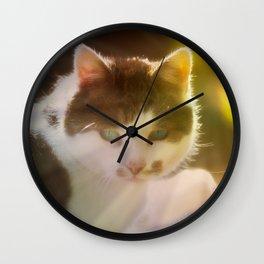 Beautiful cat in autumn sunlight Wall Clock
