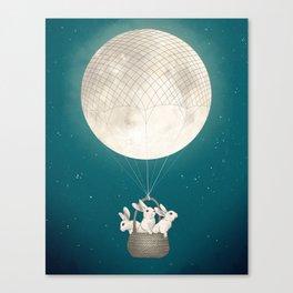 moon bunnies Canvas Print