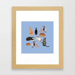 cats cats cats on light blue Framed Art Print