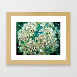 Growing in the Astro plane  Framed Art Print