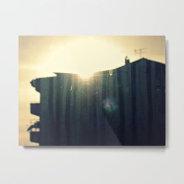 neighbours Metal Print