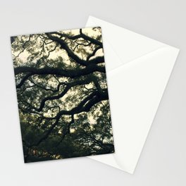 Savannah Live Oaks Stationery Cards
