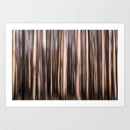 Burnt trees after Yarloop fires Art Print