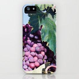 Volpaia iPhone Case