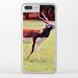 Male Blackbuck Clear iPhone Case