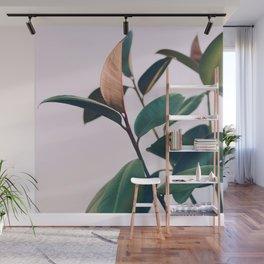 Ficus Elastica #4 Wall Mural