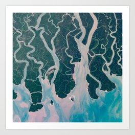 Sundarbans Mangroves from space Art Print