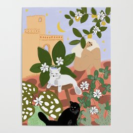 Summer in Paradise Poster