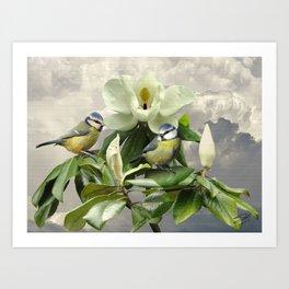 Blue Tits in Magnolia Tree Art Print