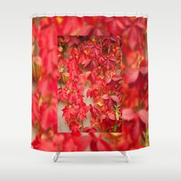 Vitaceae ivy wall abstract Shower Curtain