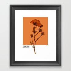 PANTONE 1385 U Framed Art Print