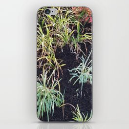 Plants in the Sun iPhone Skin