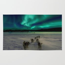 Winter Northern Lights Dog Sled (Color) Rug