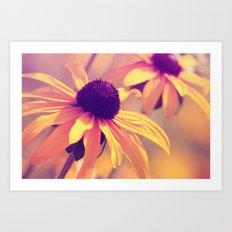 Yellow Flower - Rudbeckia Art Print