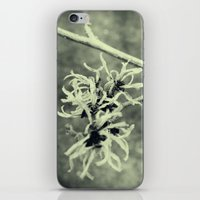 tangled iPhone & iPod Skins featuring Tangled by Esther Ní Dhonnacha