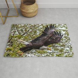 Fly By Rug
