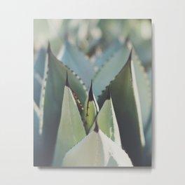 agave. M Metal Print