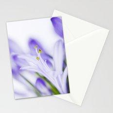 Daydreamer Stationery Cards