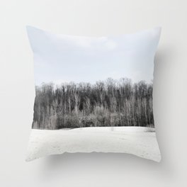 Abandoned sand quarry Throw Pillow