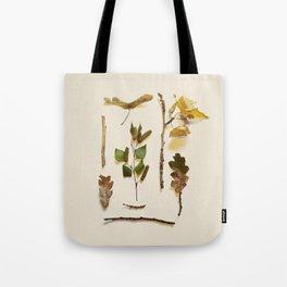 COMPOSIZIONE FOGLIE IV Tote Bag