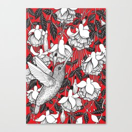 Hummingbird and fuchsia, red background Canvas Print