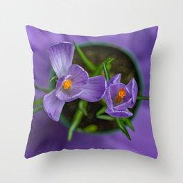 Purple Crocus in a Pot Throw Pillow