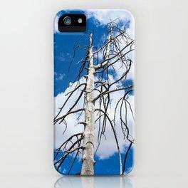 Landscape: Gila Wilderness iPhone Case