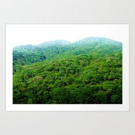 Green Hills of Hakone Art Print