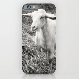 Goat Square iPhone Case
