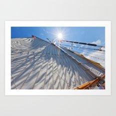 White Sails and Sunshine Art Print