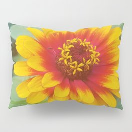 Zinnia on fire Pillow Sham