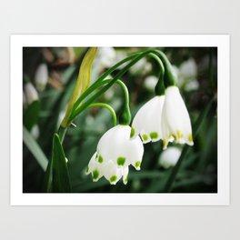 Spring Snowflake Art Print