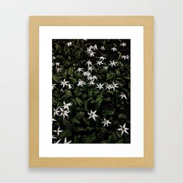 White Fawn Lilies; Open Your Heart Framed Art Print