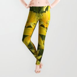 Duck Billed Dahlia Leggings