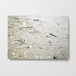 Sea shells | Coastal beach photography | Film photo fine art print Metal Print