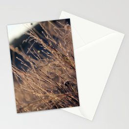 Frost Prisim Stationery Cards